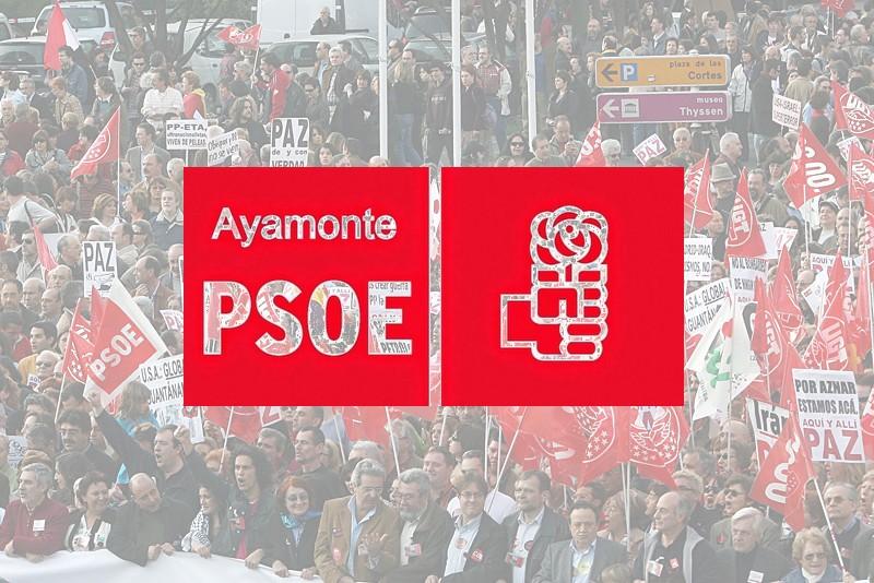 El Grupo Municipal Socialista presentará una Moción para evitar la subida del IBI.